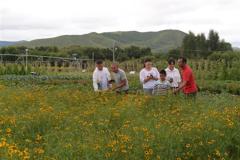 索倫牧場現代農業科技園成暑假孩子新去處