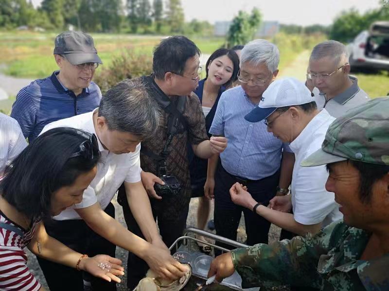 http://www.jindafengzhubao.com/zhubaoshichang/26330.html
