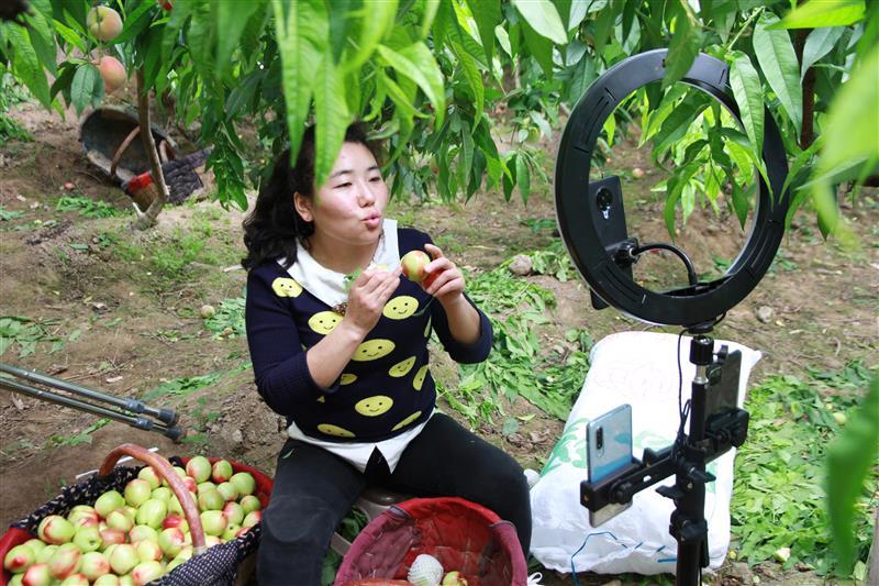 陕西大荔县:直播助农增销量