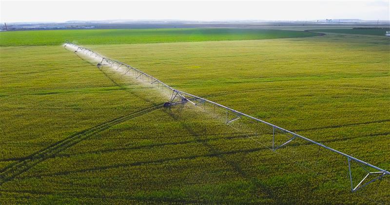 """呼倫貝爾農墾:水肥一體化設備為農作物補充 """"維生素"""""""