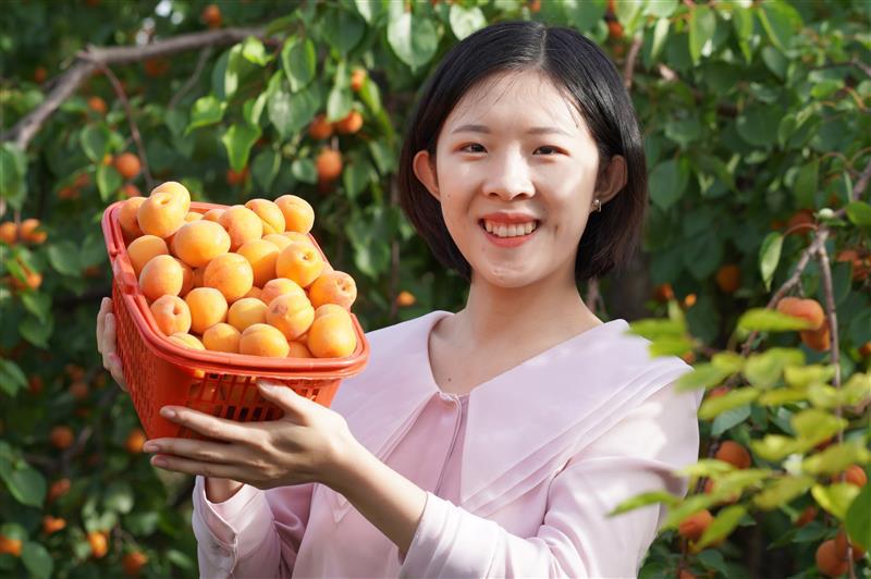 河北內丘:農旅農合激發鄉村活力