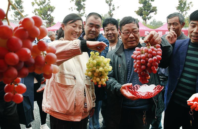 尉氏县:消费扶贫农产品推介会助农增收