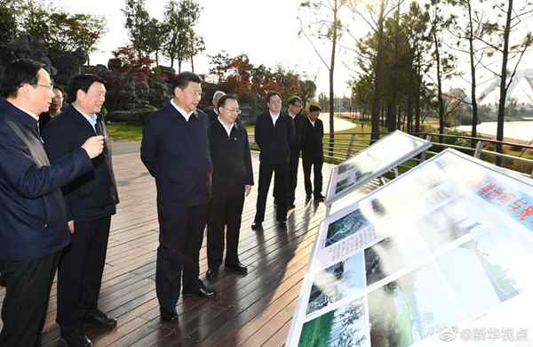 习近平:生态文明建设在推动长三角一体化发展中占有重要地位