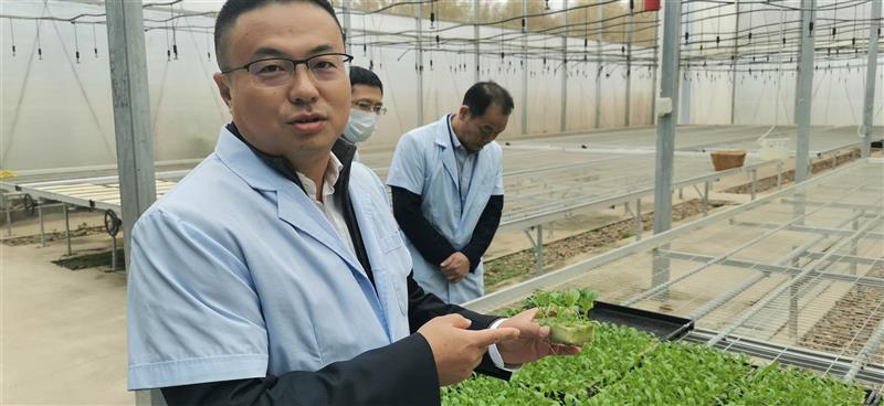 广东河源春沐源:智慧温室 智慧农业