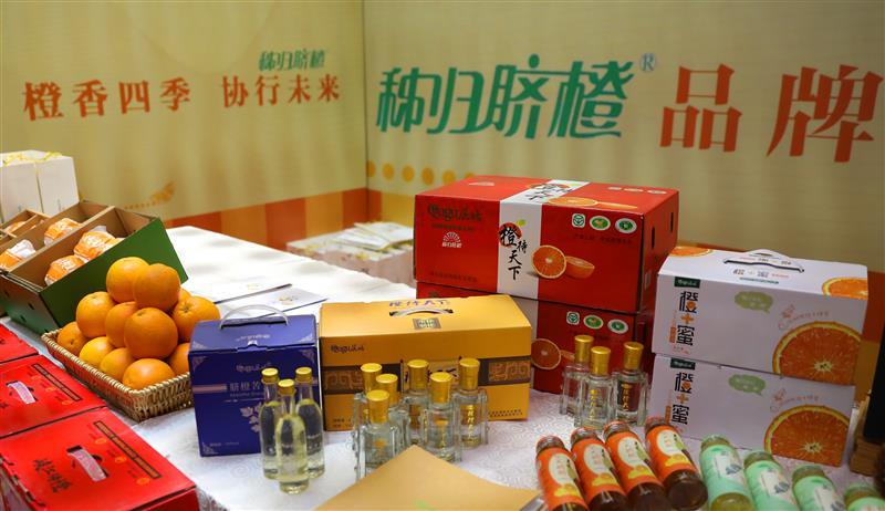 秭归脐橙在武汉开展产销对接