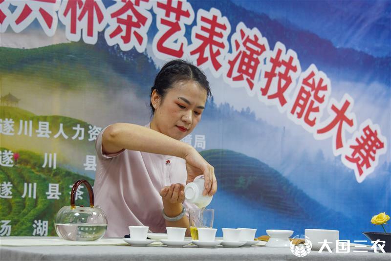 江西遂川:茶技比拼 各显其能