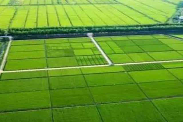 高标准农田建设快速推进