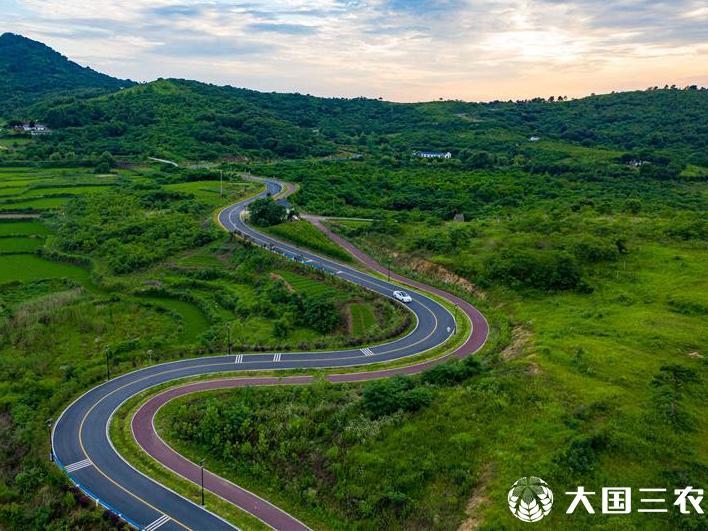 安徽肥東:山路彎彎助振興