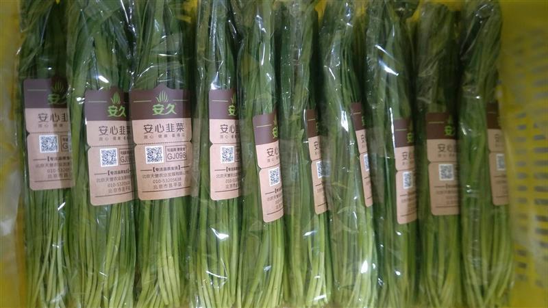 蔬菜采后技术系列之十九 韭菜夏季采后管理指导意见