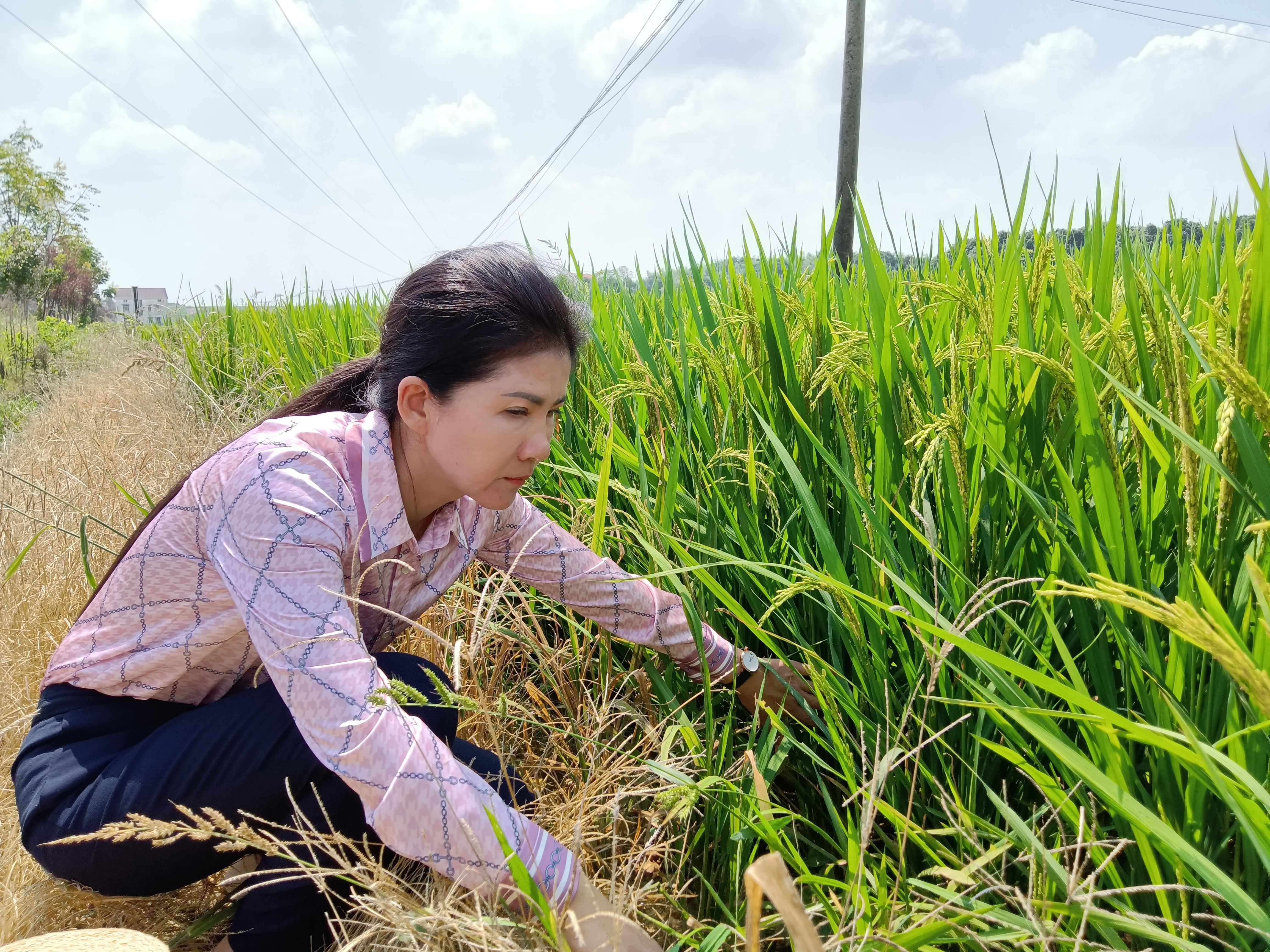 2021全国十佳农民 董敏芳