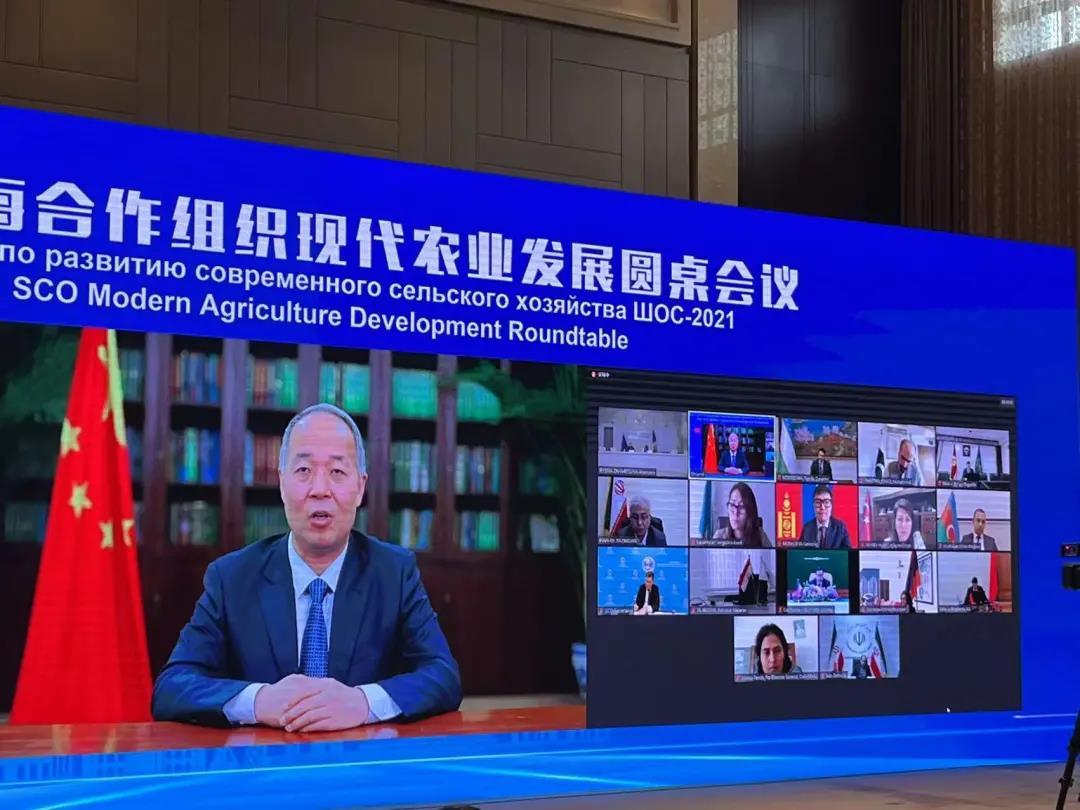 2021上海合作组织现代农业发展圆桌会议召开