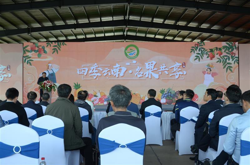 """云南""""10大名果""""宣传推介活动在玉溪新平举办"""