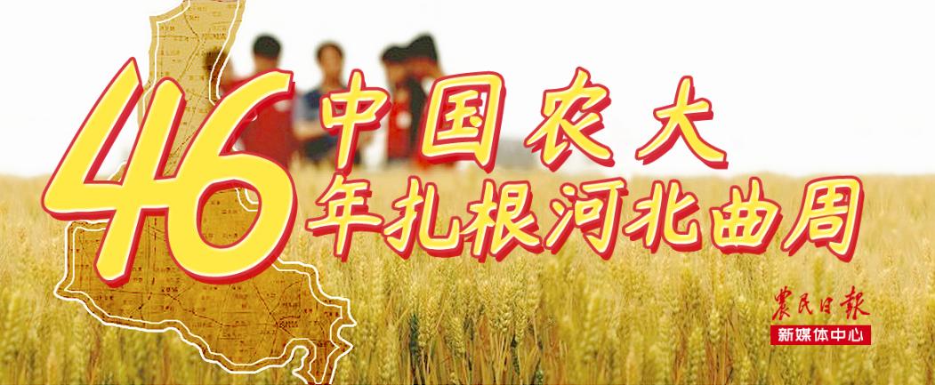 中國農大46年扎根河北曲周