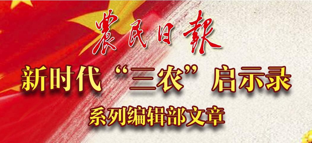 """農民日報新時代""""三農""""啟示錄系列編輯部文章"""