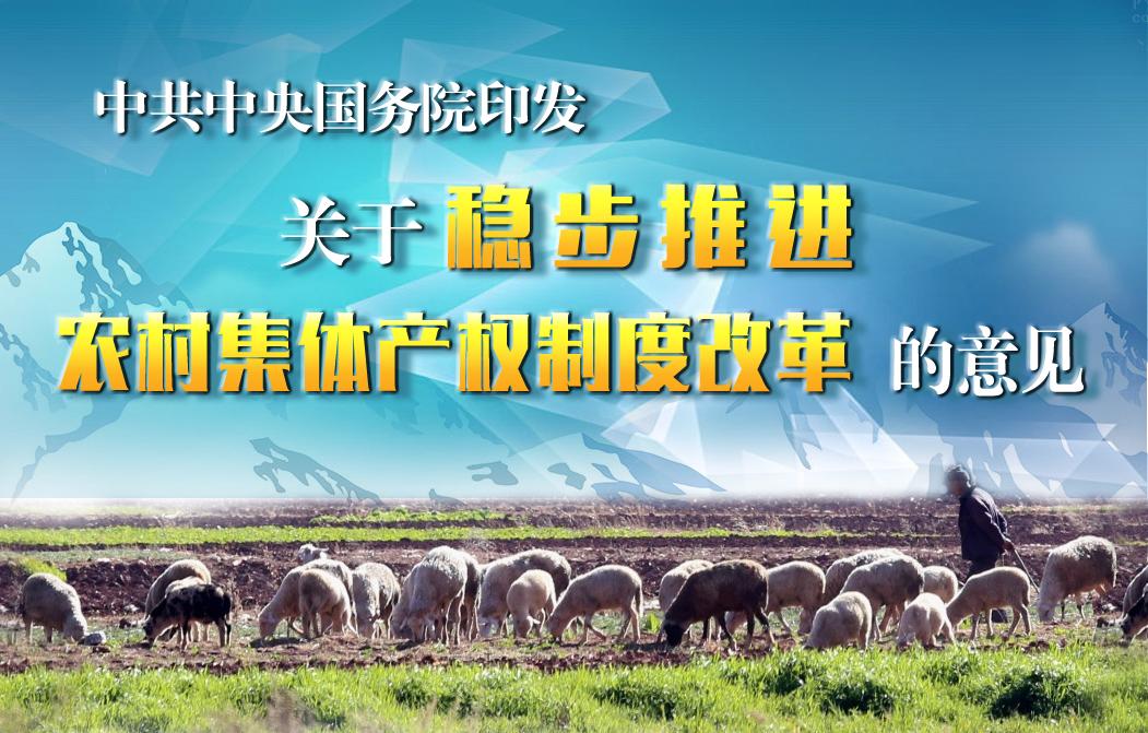 农村集体产权制度改革