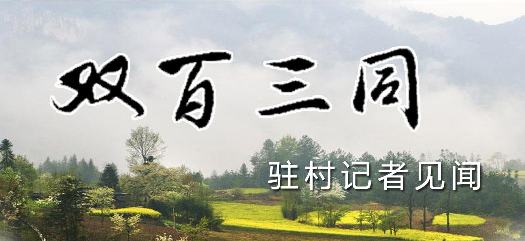 双百三同·记者驻村见闻
