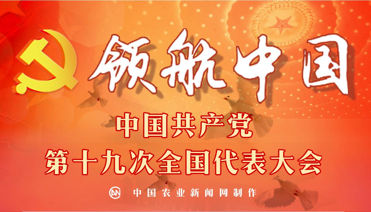 领航中国—中国共产党第十九次全国代表大会