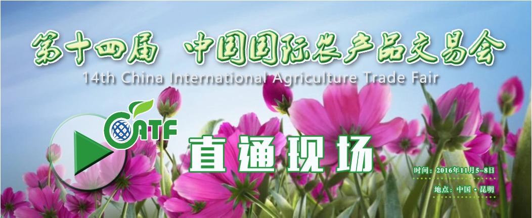 直通现场_第十四届中国国际农产品交易会