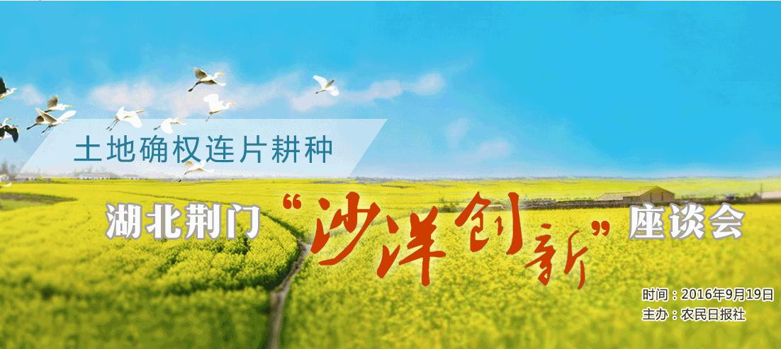 """土地确权连片耕种湖北荆门""""沙洋创新""""座谈会"""