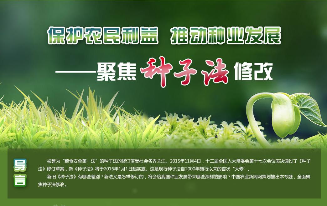 保護農民利益 推動種業發展——聚焦《種子法》修改