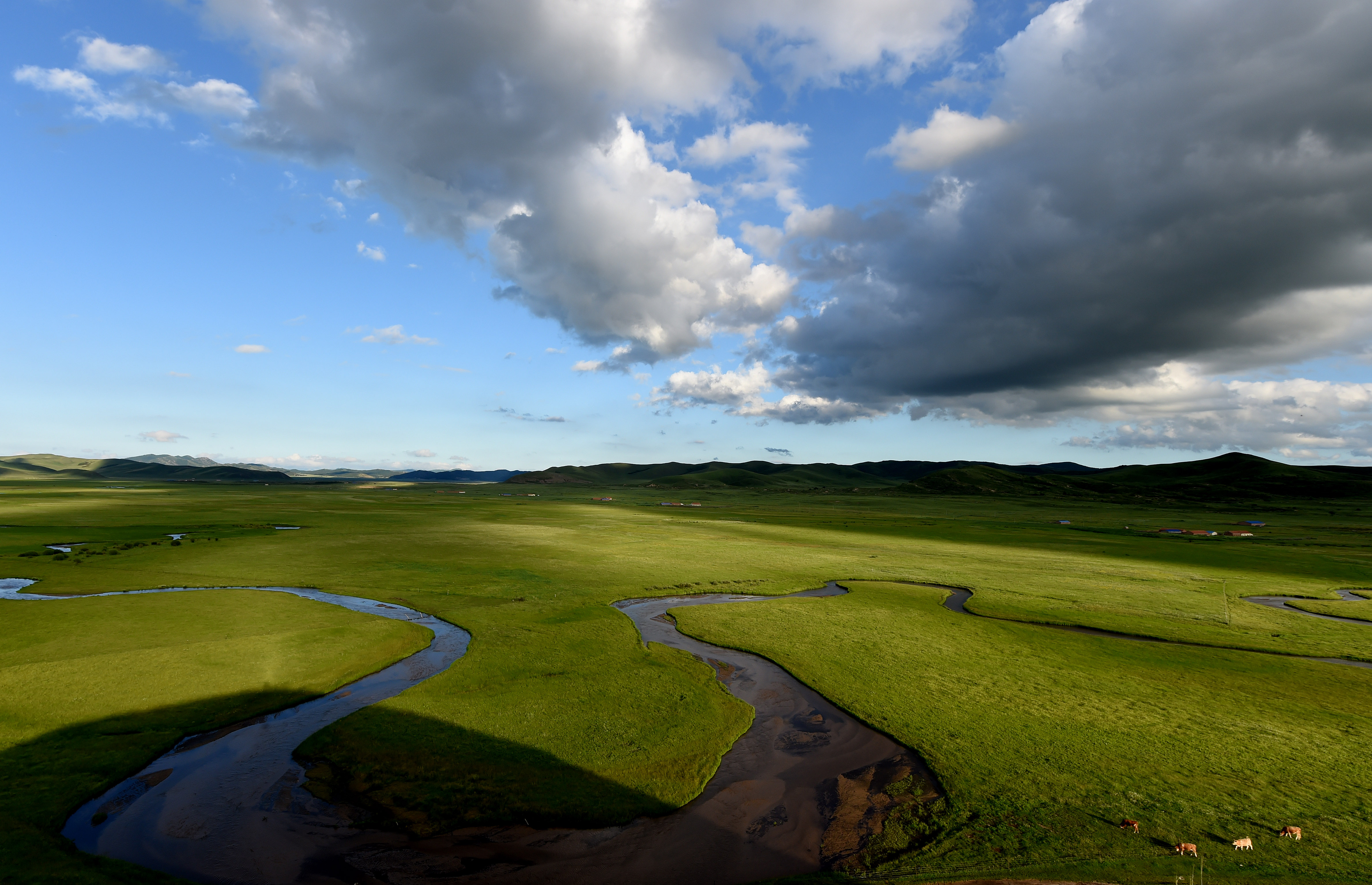 這是美麗的西烏珠穆沁旗白彥花鎮阿拉騰興安嘎查乃林河草原風光(7月23日無人機拍攝)。     今年,豐富的降雨讓位于內蒙古中部的錫林郭勒大草原在盛夏時節水草豐美,成為一片綠色的海洋。彎曲的河流、天空中飄動的云朵與草地間的牛羊和馬群構成一幅夏日美麗畫卷。     新華社記者 劉磊 攝