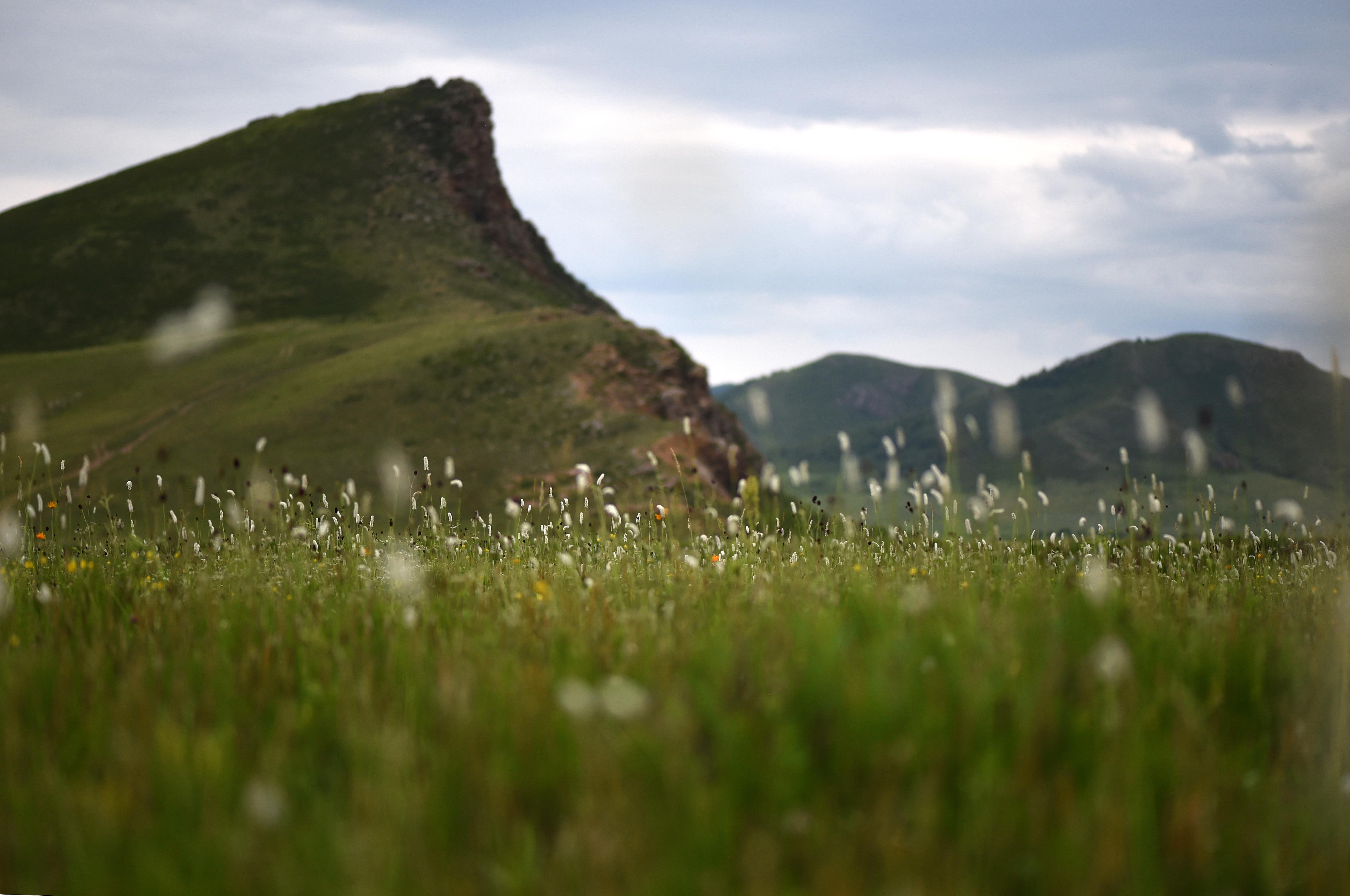 这是漂亮的西乌珠穆沁旗白彦花镇阿拉腾兴安嘎查乃林河bet36体育景色(7月23日无人机拍摄)。     往年,丰盛的降雨让位于内蒙古中部的锡林郭勒大bet36体育在bet36体育网址季节水草丰美,成为一片绿色的大陆。弯曲的河道、天空中飞舞的云朵与草地间的牛羊和马群形成一幅夏季漂亮画卷。     新华社记者 刘磊 摄