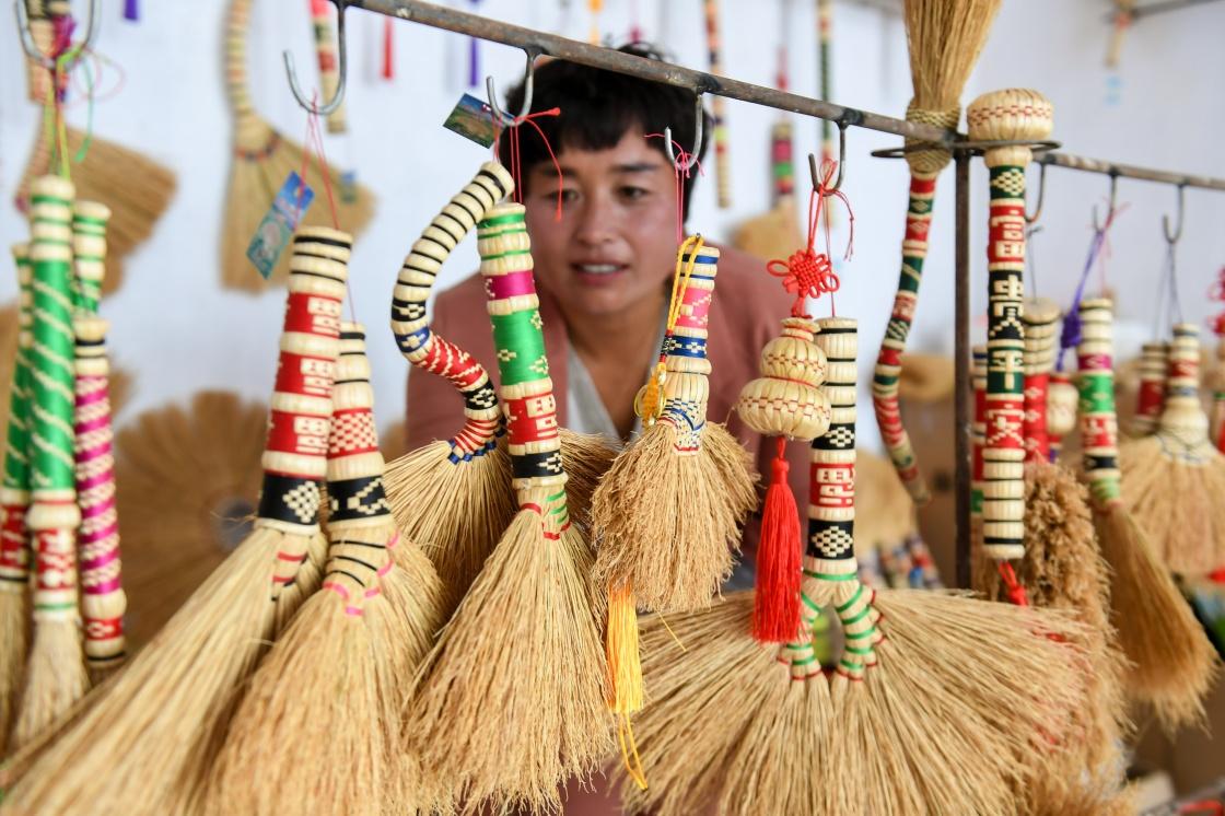 笤帚苗產業:掃除貧困掃來幸福