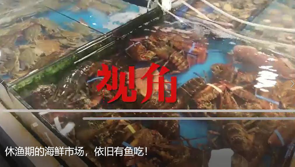 休渔期的海鲜市场,依旧有鱼吃!