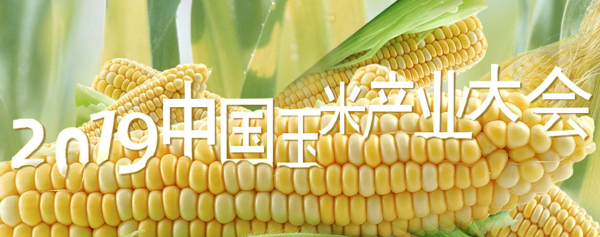 2019中国玉米产业大会