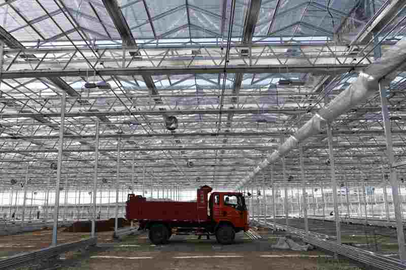 甘肅酒泉:戈壁農業建設忙