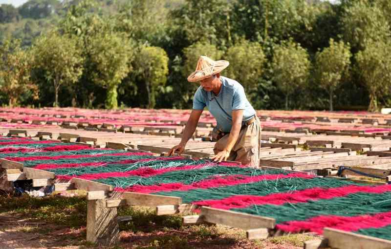 福建永春:傳統篾香產業的電氣化之路