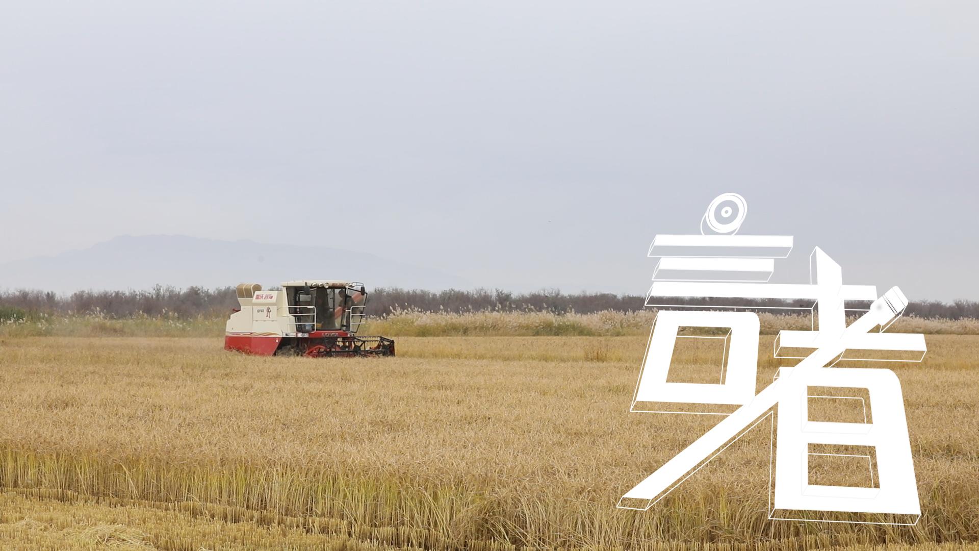 《言者》第1季第2集——種糧,樸素的執念