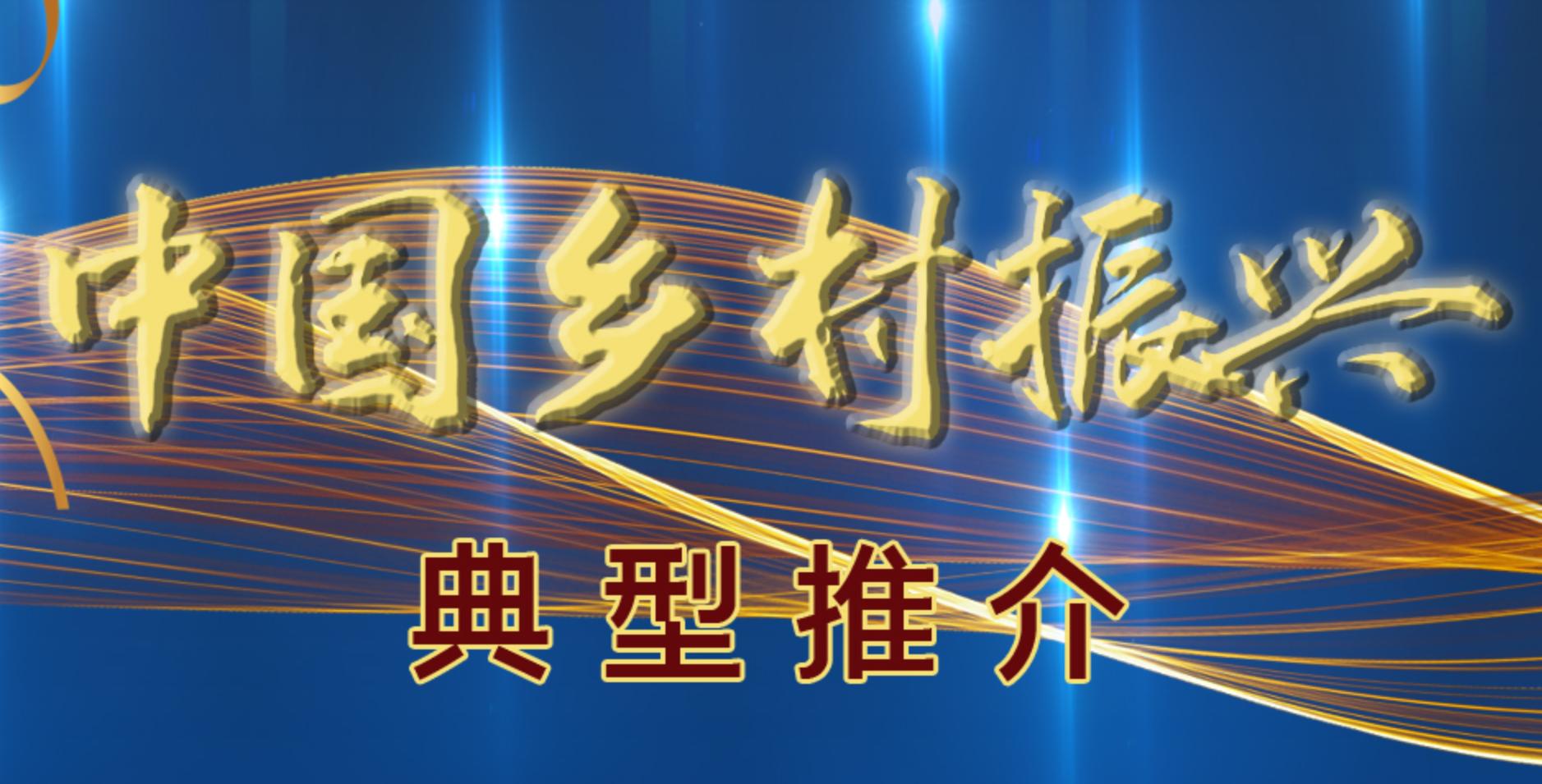 中国乡村振兴典型推介