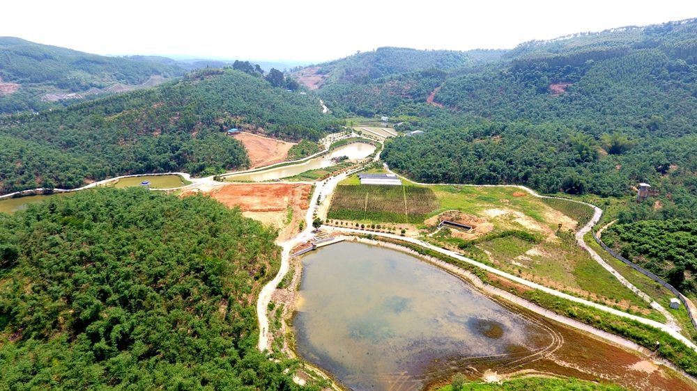 广西柳州创建现代农业产业园区纪实