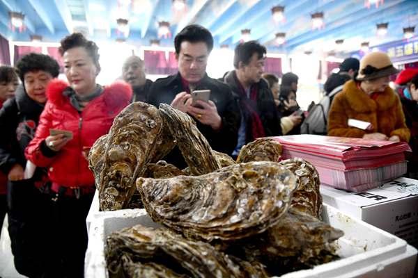 第五屆山東乳山牡蠣文化節開幕