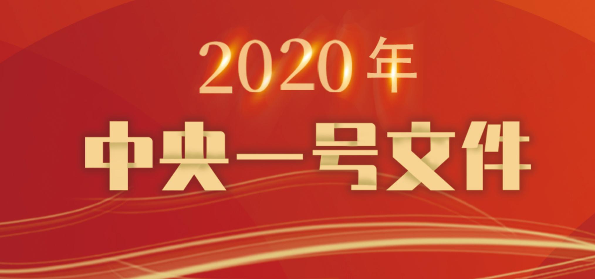 2020年中央一号文件发布