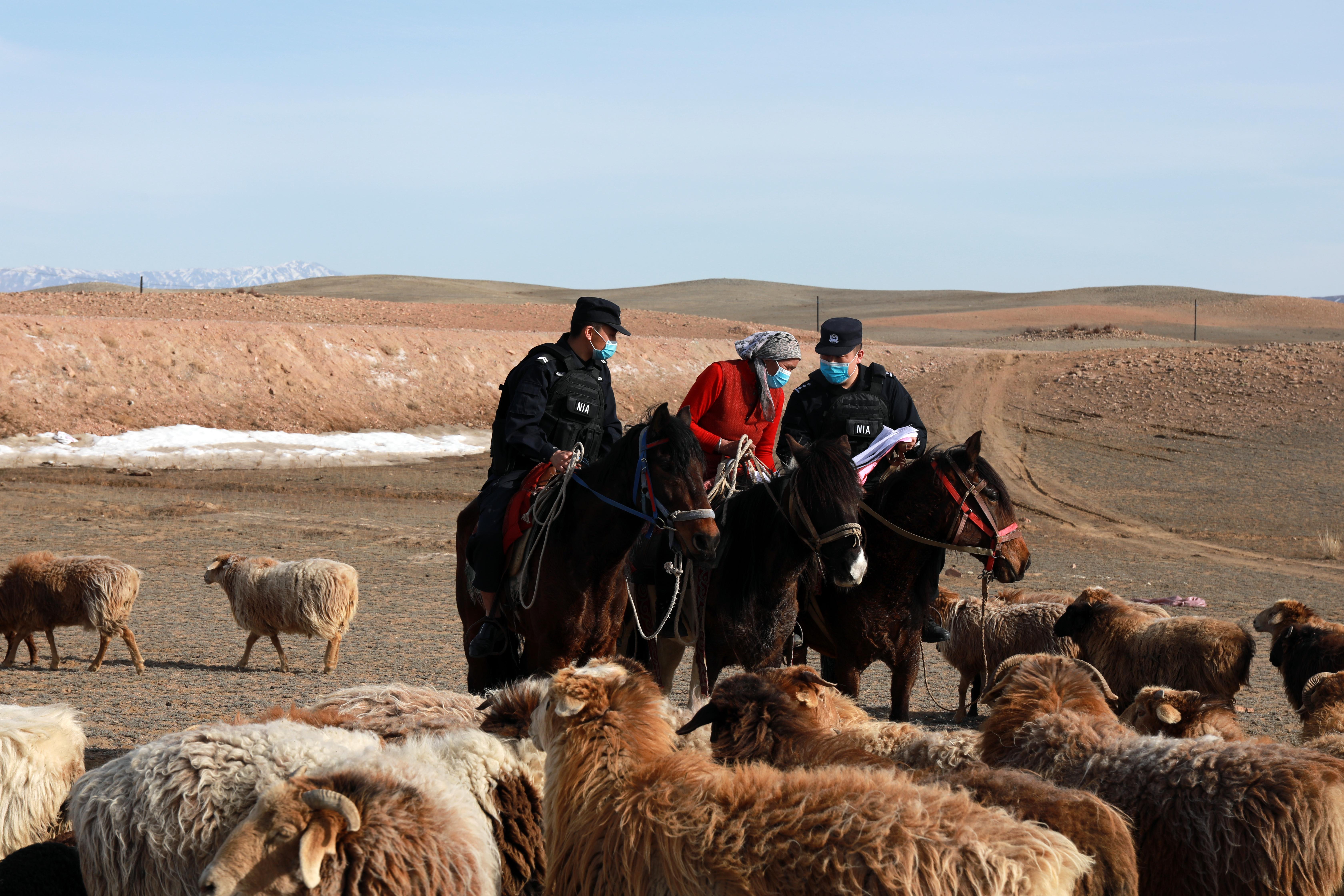 新疆富蕴:确保牧民转移安全的马背警察室