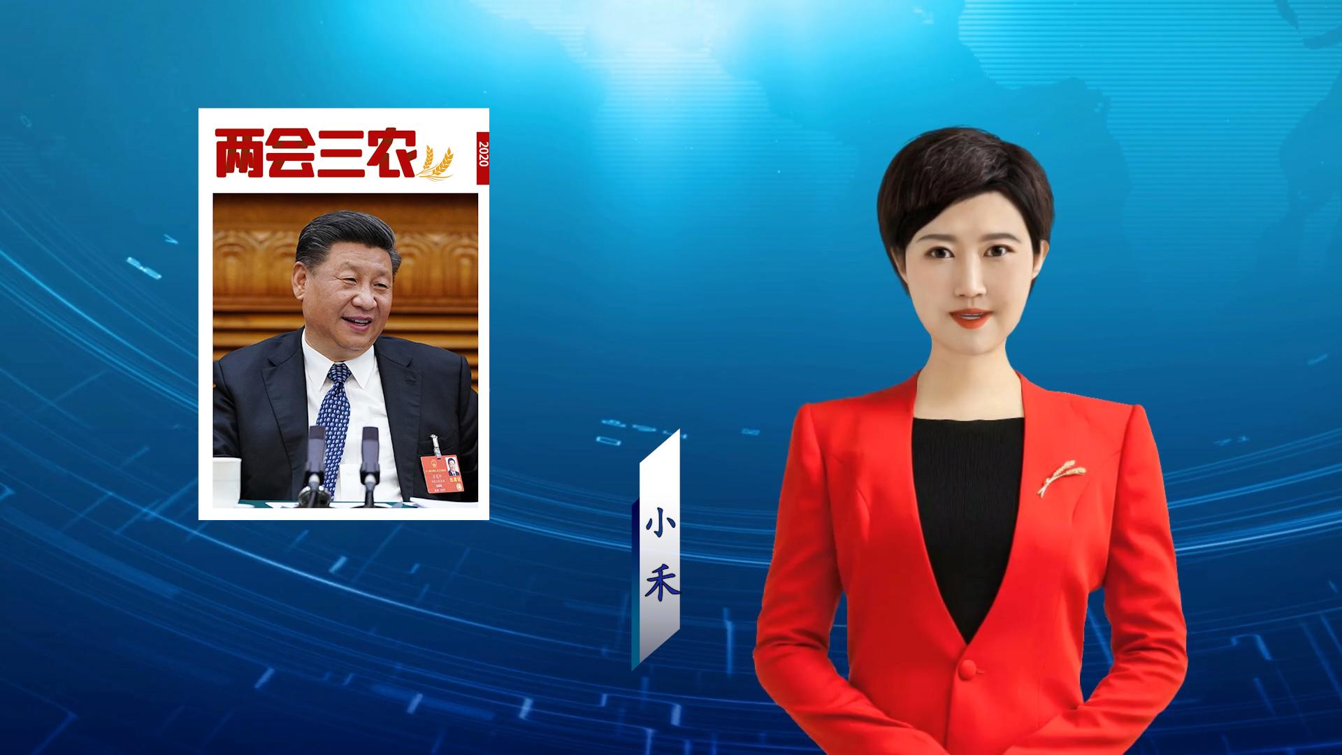 【两会·小禾话凤凰彩票官方网址⑥】农民日报记者专访代表委员