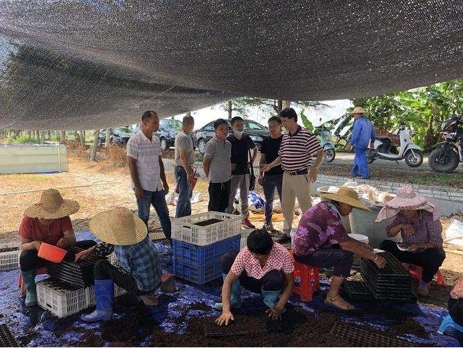 百余支队、740人!广东省农科院科技特派员暑期大下乡