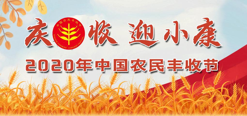 庆丰收 迎小康 2020年农民丰收节
