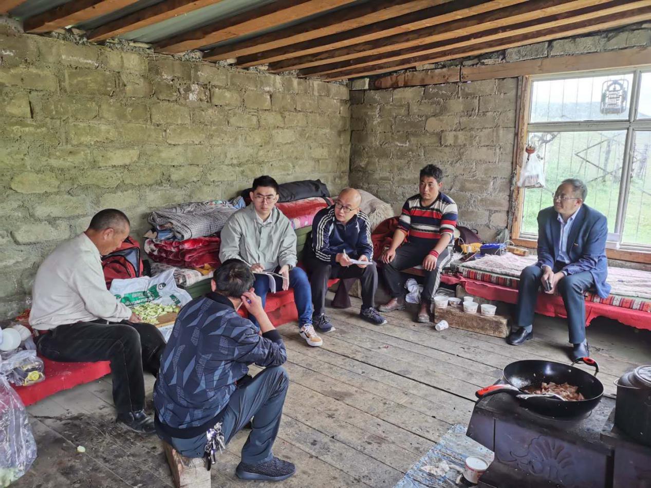 【涉藏重点省份】采访组在甘孜州理塘县村戈乡托仁村采访牧民养殖牦牛情况