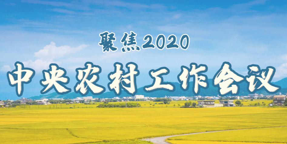 聚焦2020中央农村工作会议