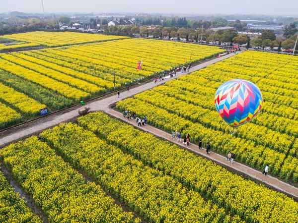 """潍坊创新提升""""三个模式"""" 打造全国乡村振兴样板"""