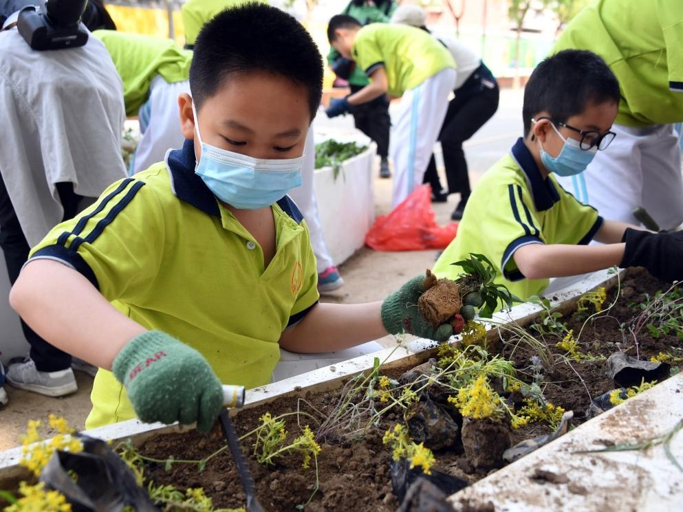 北京海淀:街区增绿我参与