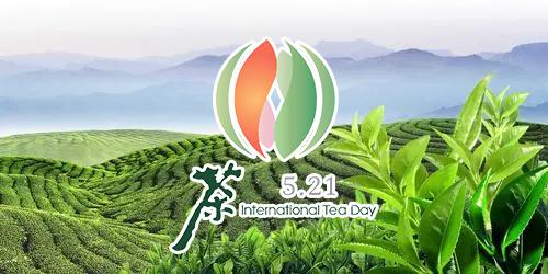 5·21國際茶日