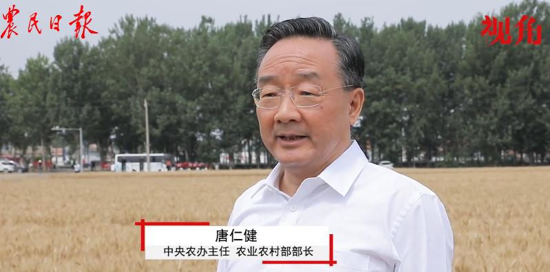 唐仁健:今年夏粮再获丰收,产量再创历史新高!