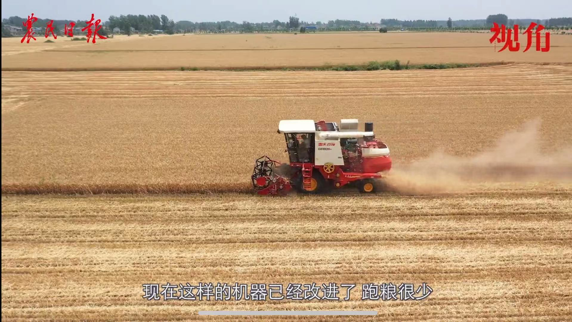 看三夏|机收减损有诀窍:农机倒一步,小麦多一筐!