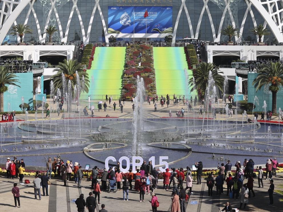 昆明:COP15会场今日起免费向公众开放